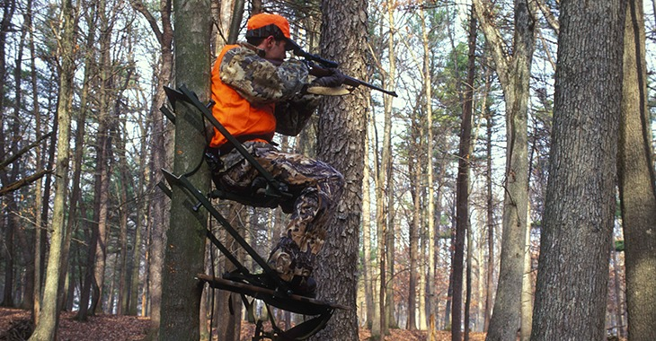 Hunter with rifle on tree